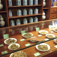 In this photo you can see some of the interesting herbal medicines on display at the Hong Kong Museum of Medical Science.