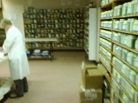 This is the herbal dispensary at Victoria University's St. Albans campus where I did much of my training.